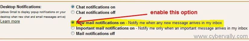 popup option Get Gmail New Mail / Chat Notification via Popups For Chrome