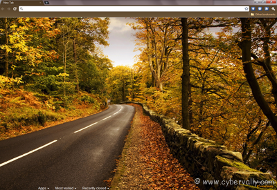 Autumn Road Theme Top 10 HD Quality Google Chrome Themes for Download
