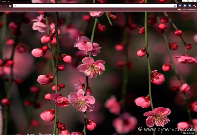 Flowered Theme 2 Top 10 HD Quality Google Chrome Themes for Download