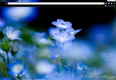 Flowered Theme Top 10 HD Quality Google Chrome Themes for Download