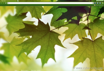Leaves Theme Top 10 HD Quality Google Chrome Themes for Download