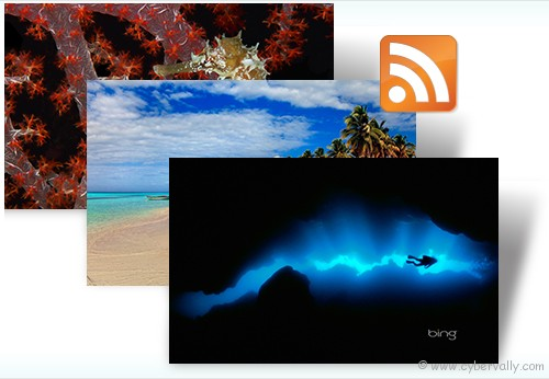 Bing Dynamic Top 10 HD Quality Nature Themes for Windows 7