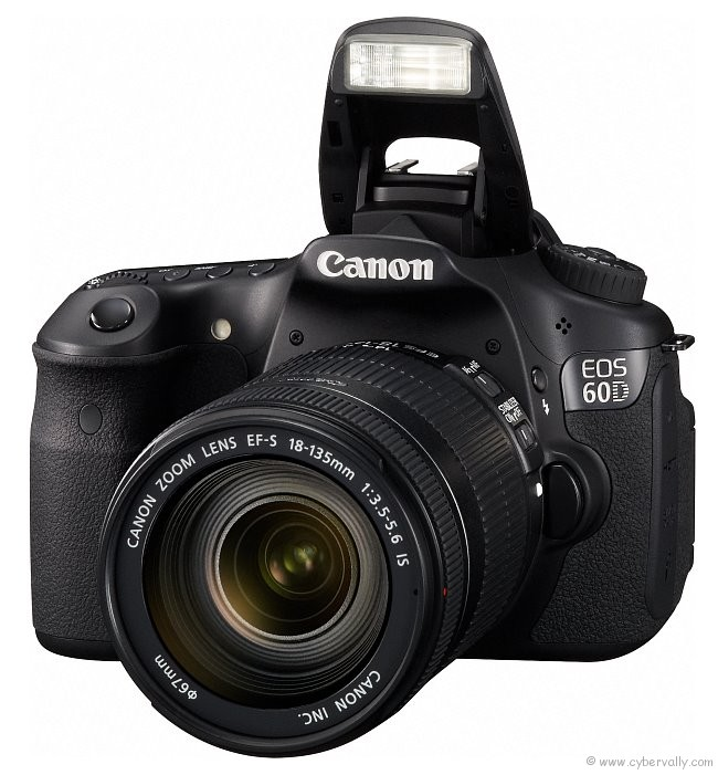 Top 6 DSLR Cameras For Professional Photography