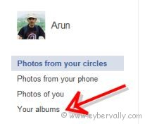 your album How to Create Private Photo Album in Google Plus